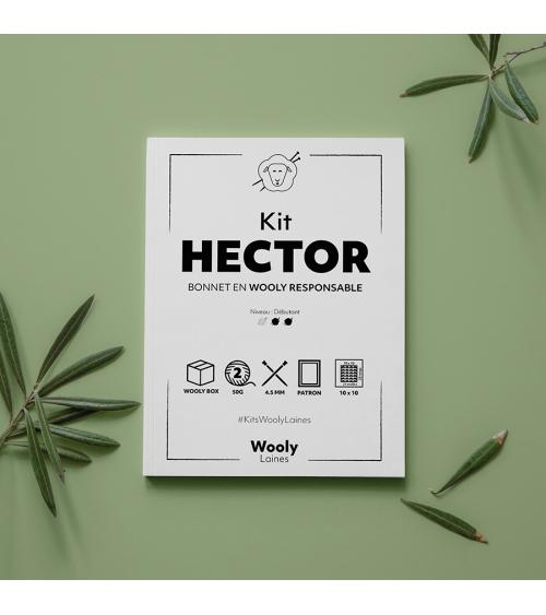 Bonnet Hector - Patron de Tricot en Wooly Responsable Bonnet Hector- Patron de tricot en Wooly Responsable  Niveau débutant